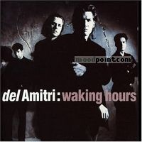 Amitri Del - Waking Hours Album
