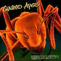 Apes Guano - Don