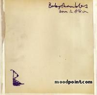 Babyshambles - Down in Albion Album