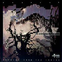 Bauhaus - Burning From The Inside Album