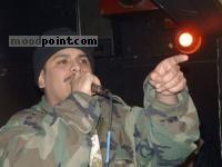 Bin Laden (song)