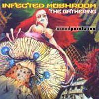Infected Mushroom - The Gathering Album