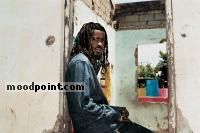 Beenie Man Author