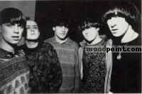 Inspiral Carpets Author