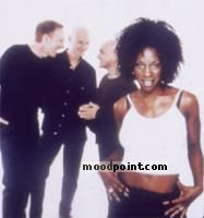 M People Author